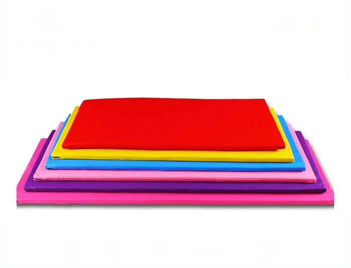 Dance gym mat(one folded)